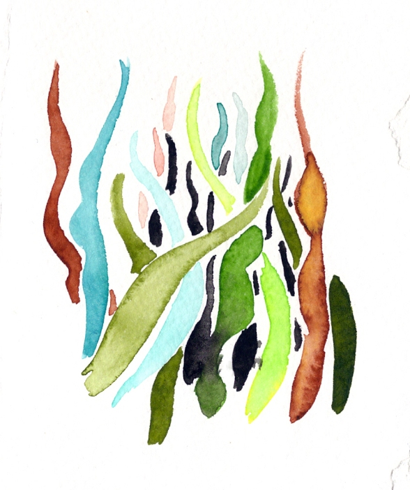 Seaweed. Watercolor on paper.