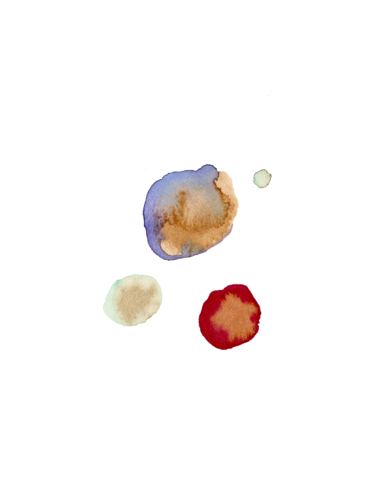 Seeds. Watercolor on paper.