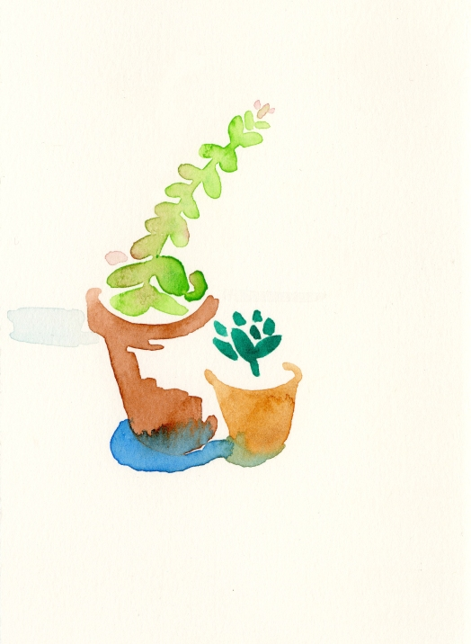 Succulents. Watercolor on paper.