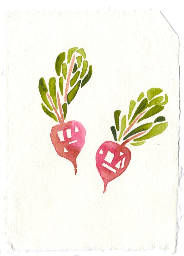 Beets. Watercolor on paper.