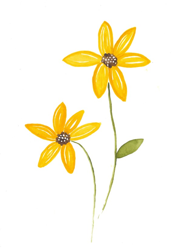 Susans. Watercolor on paper.