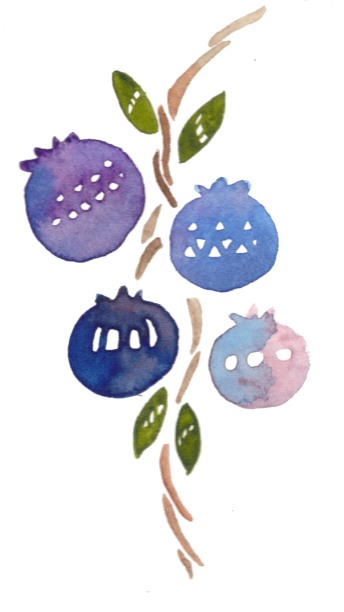 Blueberries. Watercolor on paper